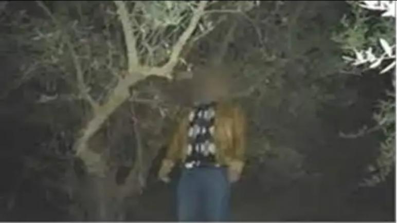 العثور على جثة شرطي معلقة على شجرة.. شاهد